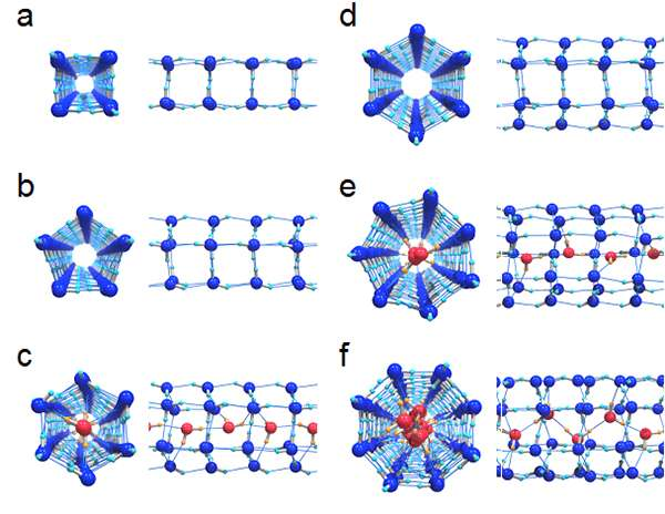 Evidence for solid-liquid critical points of water in carbon nanotubes