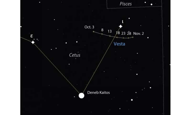 Invest a night in Vesta
