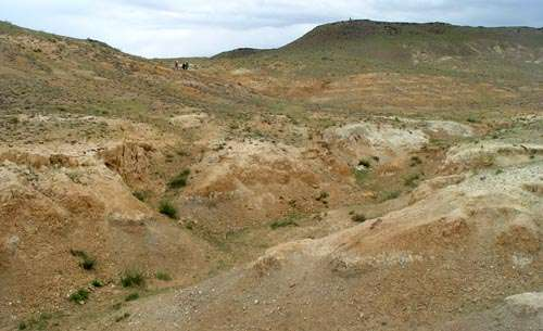 New discovery of Late Miocene hipparion fossils from Baogeda Ula, Inner Mongolia, China