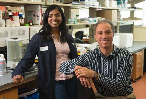 Personalized saline may provide solution to heart death