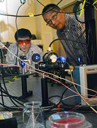 Researcher explores decoding of complex neural circuits