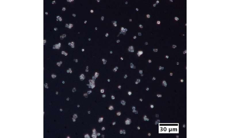 Scientists are developing new sample holders for tiny microcrystals