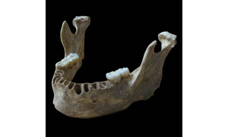 Scientists discover an early modern human with a recent neanderthal ancestor