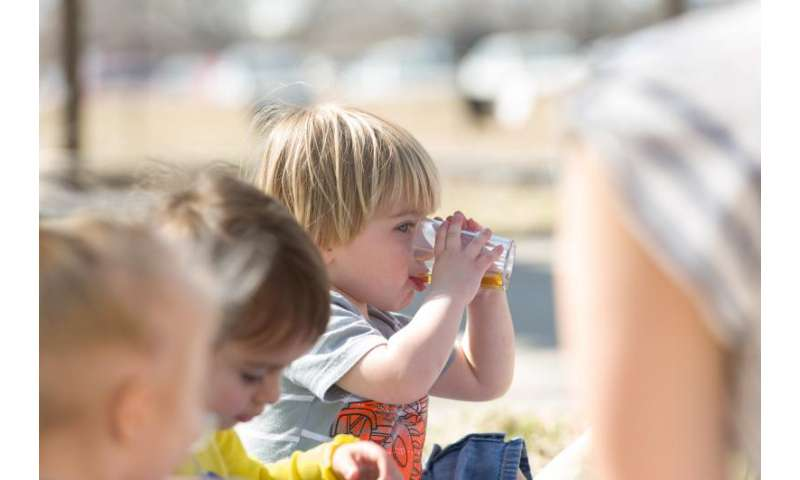 Researchers suggest ways to develop healthy eating habits in a child