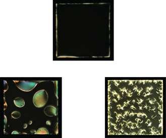 Liquid crystals show potential for detection of neuro-degenerative disease