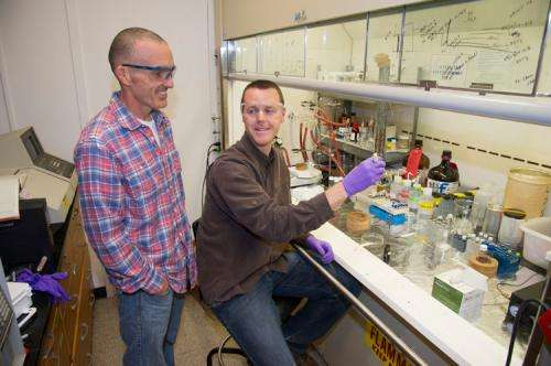 Researchers produce two bio-fuels from a single algae