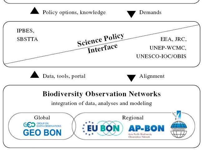 Connecting the dots: Integrated biodiversity data could be the key to a sustainable future