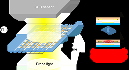 Imaging technique for performance distribution of organic transistor arrays