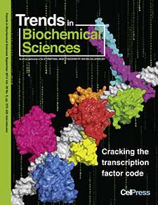 New insight into how proteins find their dna binding sites in the genome