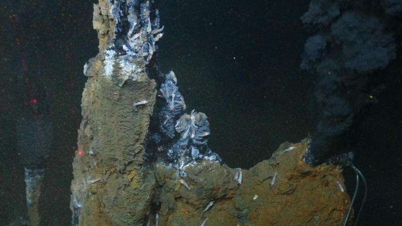 Scientists solve deep ocean carbon riddle