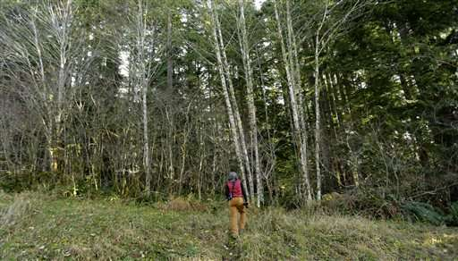 Washington project ensures forest stores carbon for decades