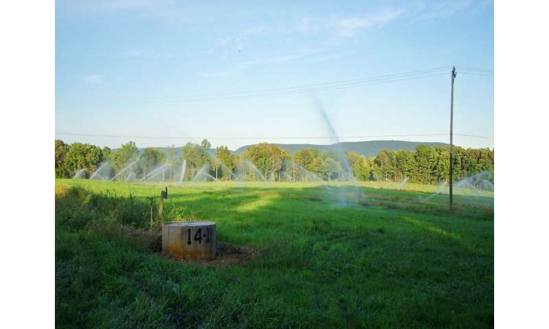 researchers use IT to study environmental sustainability of the 'Living Filter' water system