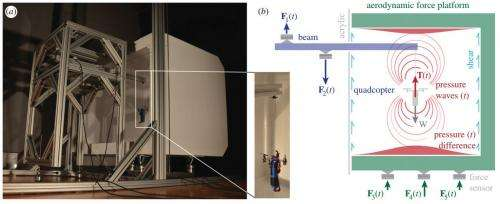 Weight riddle solved by Stanford bird wing test