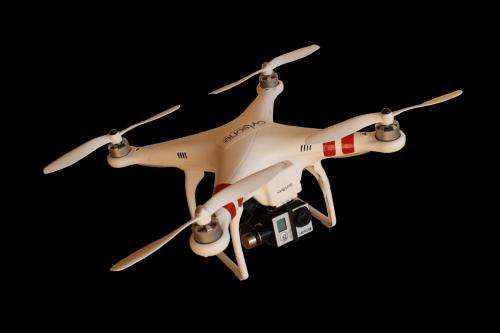 Researchers conduct study to determine impact of using drones to study birds