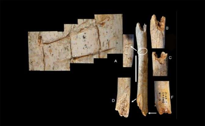 Neanderthals manipulated the bodies of adults and children shortly after death
