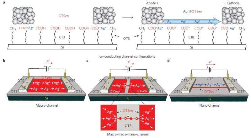 Nanoionics: A versatile system for constructing ion-conducting channels on monolayers