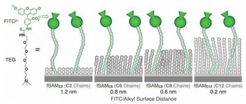 Experimental studies of ionic interactions near a hydrophobic surface in an aqueous environment