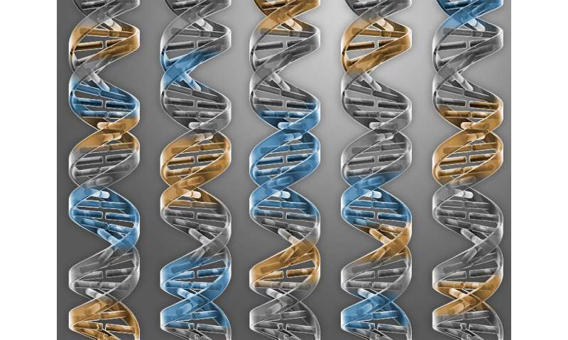 Scientists find genetic signature enabling early, accurate sepsis diagnosis
