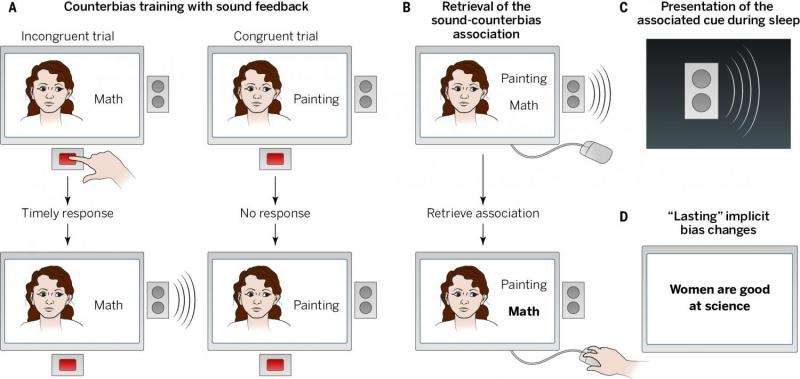 Unlearning implicit social biases during sleep