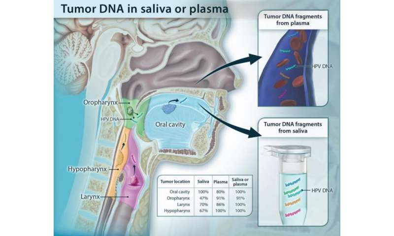 DNA shed from head and neck tumors detected in blood and saliva