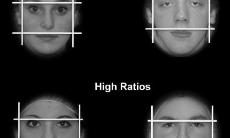What the shape of your face says about you