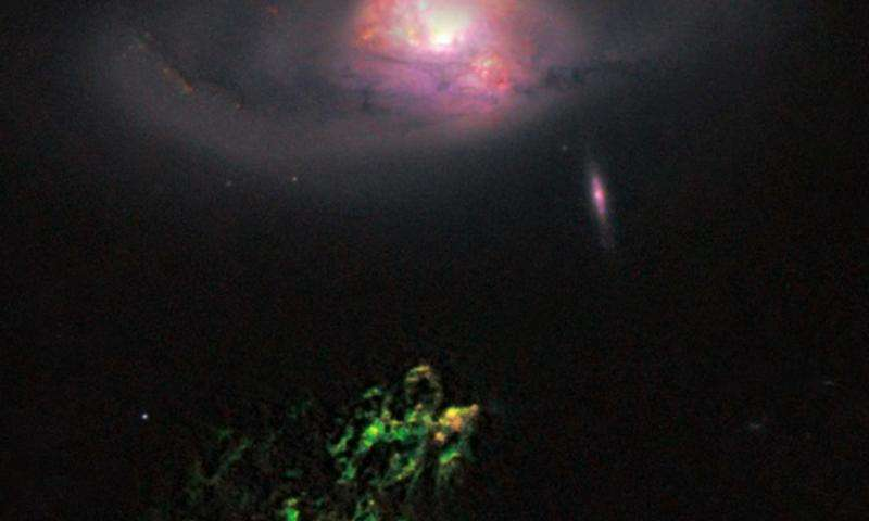 Citizen scientists discover what's out there