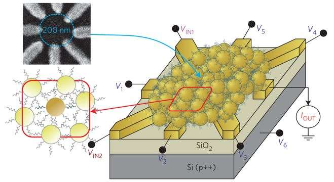 Researchers use disordered matter for computation, evolving breakthrough nanoparticle Boolean logic network