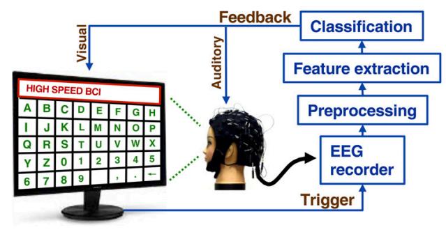 Researchers develop a fast, noninvasive brain-computer interface