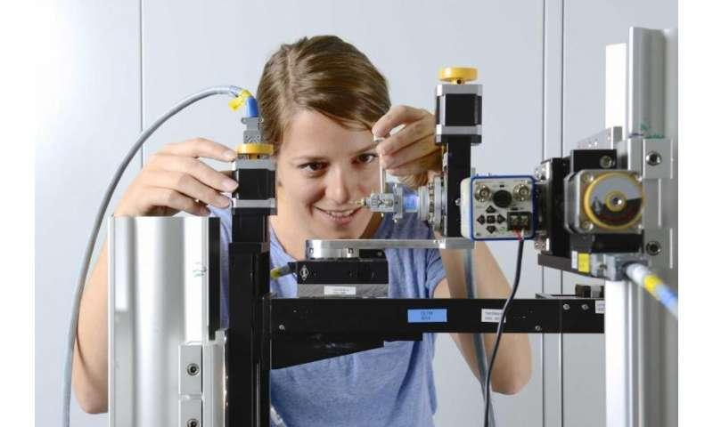 3D nanostructure of a bone made visible