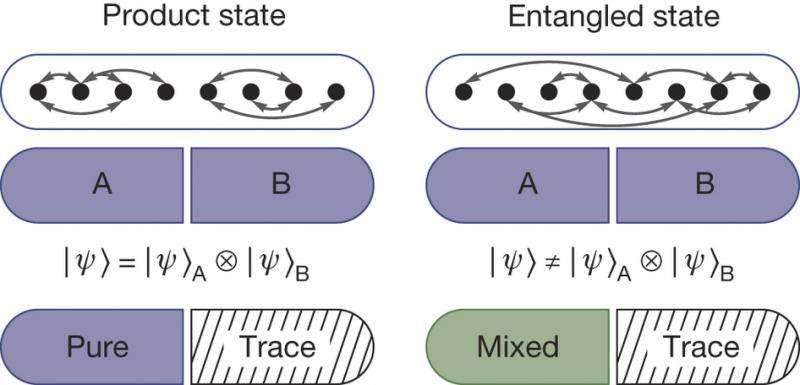 A way to study entanglement entropy between multi-body systems