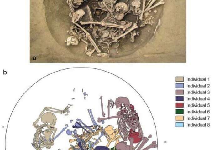 Skeletons found in pit in France offer evidence of Neolithic warfare