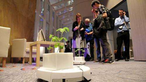 Researchers create Soybots, mobile micro-garden, to be on the go