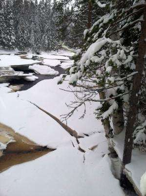 Climate change can cause loss of important ice dynamics in streams