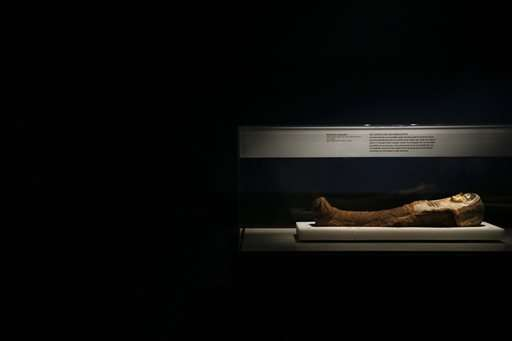 Exhibit's CT-scanned mummies give new look at old world