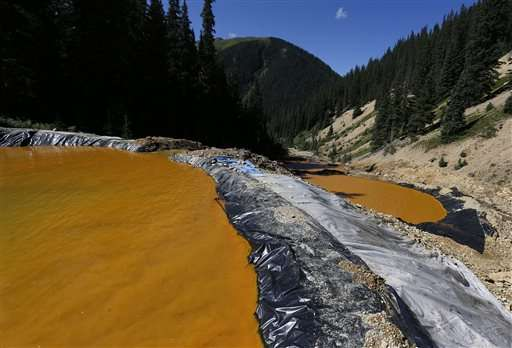 Researchers find heavy metals along river after mine spill