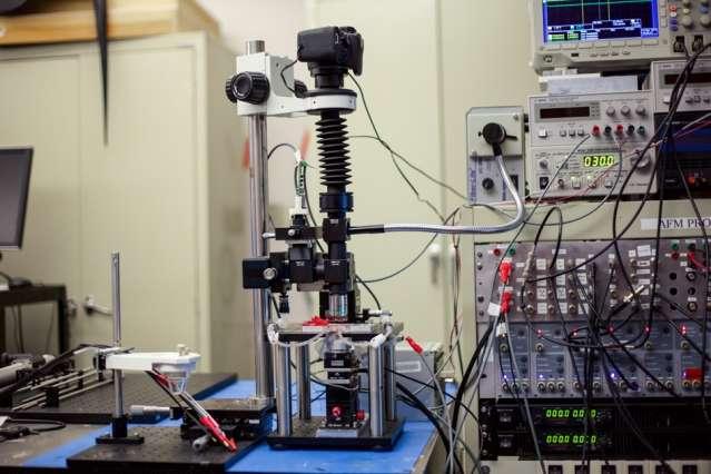 New microscope creates near-real-time videos of nanoscale processes