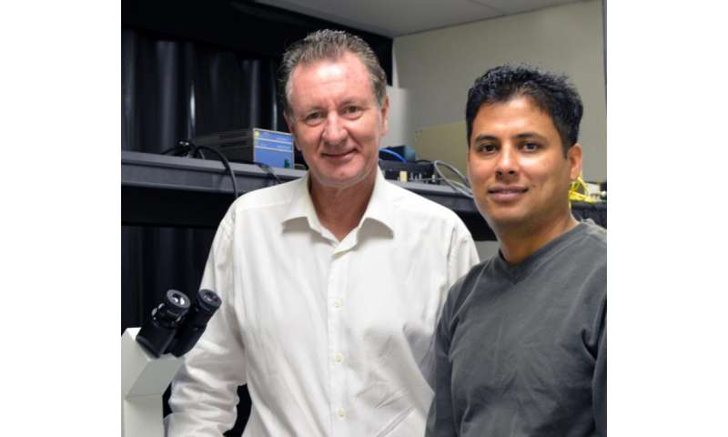 TSRI scientists show how drug molecules regulate a medically important protein