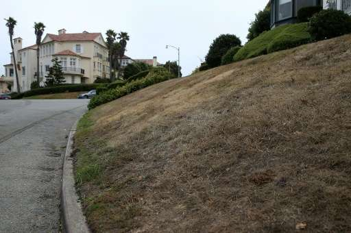 A brown lawn is seen in front of a home in San Francisco, California, due to severe drought in the state