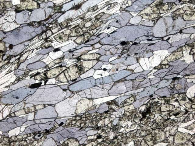 Age of blueschist is not an indicator of the date of emergence of plate tectonics