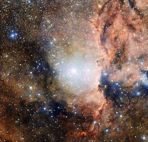 A grand extravaganza of new stars