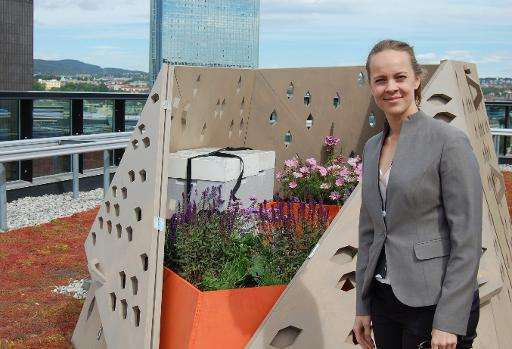 Amateur beekeeper Marie Skjelbred stands next to her beehive on the 12th floor of a building in Oslo,  June 11, 2015