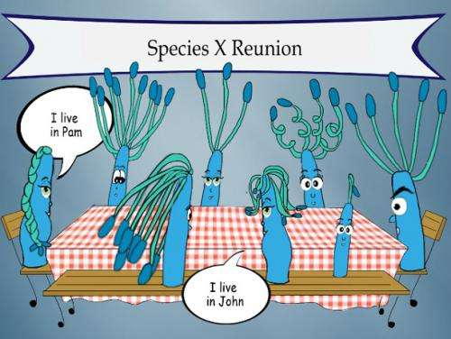 Among gut microbes, strains, not just species, matter