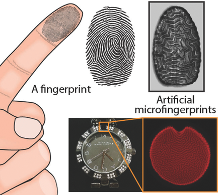 Anti-counterfeit polymers work like fingerprints