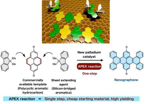A rapid extension of nanographene sheets from readily available hydrocarbons