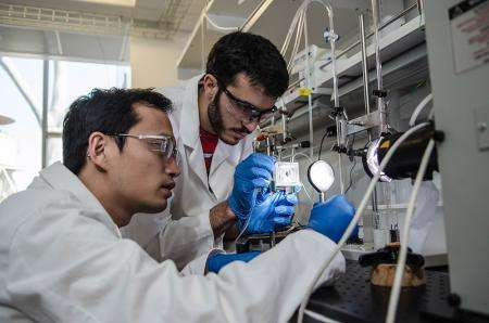 Artificial leaf harnesses sunlight for efficient fuel production