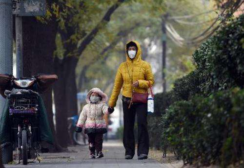 A woman and child wear masks on a polluted day in Beijing on November 26, 2014