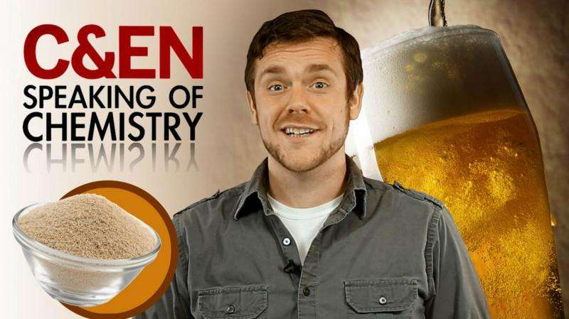Better beer chemistry: It's all about the yeast (video)