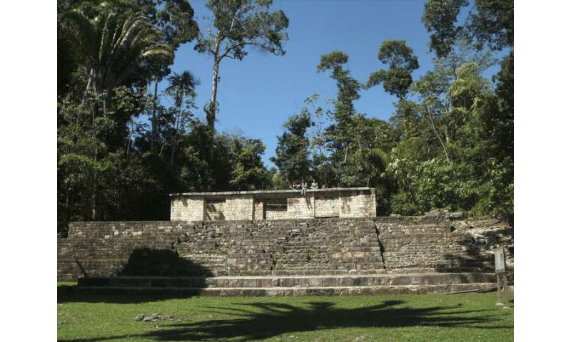 Beyond the temples, ancient bones reveal the lives of the Mayan working class