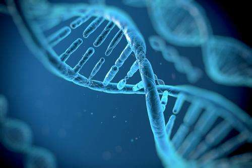 Bioengineers develop tool for reprogramming genetic code