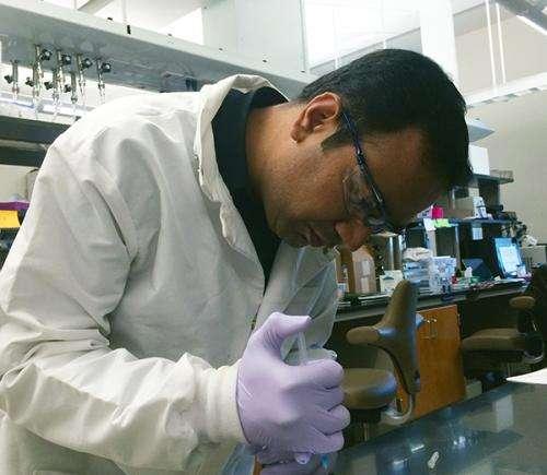 Biomedical engineer developing material for healing broken bones